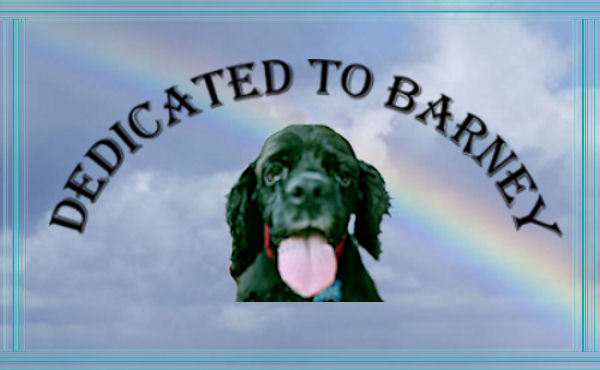Barney's Dedication Photo